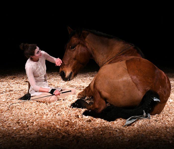 Cie EquiNote - Avant la nuit d'après - © Alain Julien